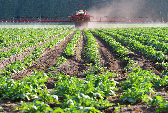 Farm being sprayed with pesticides